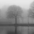 THE FOG by Adrianbennet