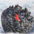 Black Swan by Anastasia Zabrodina