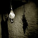 Hanging Fowl by ragman
