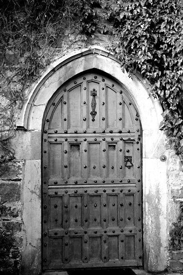 The Door.......... by wildone