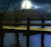 Moonrise over the River by RC deWinter