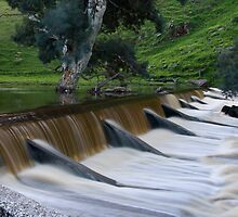 """""""Overflow"""" by Dave  Hartley"""