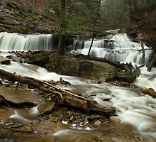 Delaware Falls by Mark Van Scyoc