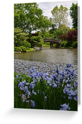 Spring in a Japanese Garden by Paula Betz