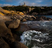 Jetty Bay, Montague Island by Josh Boyd