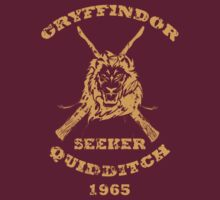 Harry Potter Gryffindor- Seeker by krishnef