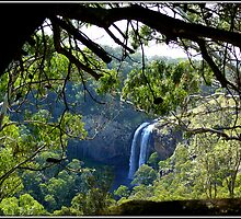 Lower Ebor Falls    --- NSW  Australia by shortshooter-Al