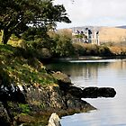 Puxley Mansion - Dunboy, Beara, Ireland by CliveOnBeara