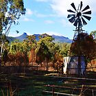 Mount Kaputar Range. Narrabri NSW Australia by Liza Barlow
