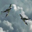 Spitfires by Matthew Laming