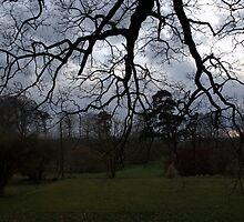 Dark Clouds by Alex Barry