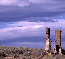 Chimneys - Tuscarora, Nevada by Harry Snowden