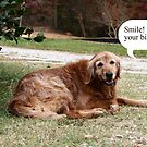 Smile!  Its Your Birthday! by DebbieCHayes