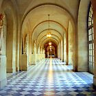 Palace of Versailles by Alberto  DeJesus