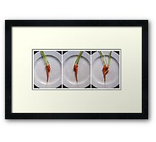 One Plus One Equals Three Framed Print