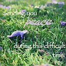 Sending you peace by Tiffany De Leon