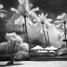 The Pool Deck - Fiji by Hans Kawitzki