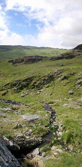 Pass the stream - Healy Pass, Beara, Ireland by CliveOnBeara