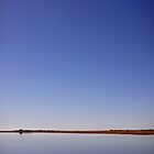 Etosha Horizon by Natalie Broome