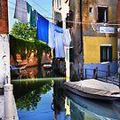 Venice washing #5 by Luke Griffin