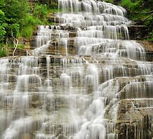 Hector Falls - New York State by AskinImages
