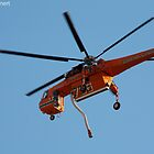 Skycrane To The Rescue by Timothy L. Gernert