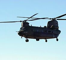 CHINOOK by Stephen Kane