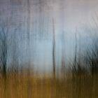 Grass Pond by Su Walker