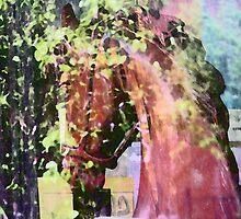 Horse Memories by Lenore Senior
