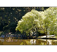 Lake Daylesford (Card) by prbimages