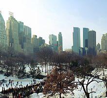 Central Park Winter Morning by simtmb