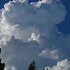 Frothy Cream Cloud by BrendaForsey