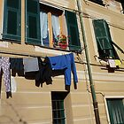 Sunshine, Shutters and Washing by joycee