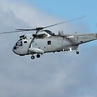 RAN  -  Westland Sea King by Cecily McCarthy