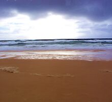 Cloudy Morning on Sunshine Beach by Kate Trenerry