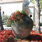 Flower pot on Brijuni  by machka