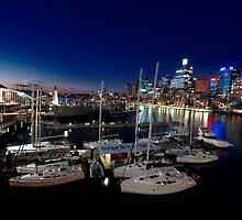 View of Darling Harbour by Amelia Chen