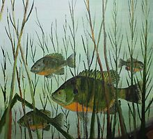 Stacked Blue Gills by Jack G Brauer