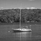 *SAILBOAT AT ANCHOR* by RGHunt