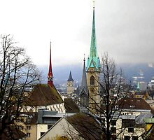 Winter view over Zurich by Charmiene Maxwell-batten
