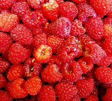 Raspberrylicious! by Marcia Rubin