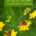 My Grace is Sufficient for you ~ 2 Cor 12:9a by Robin Clifton