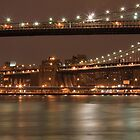 Brooklyn And Manhattan Bridges At Night by boris reyt