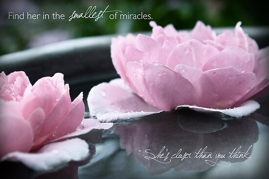 Find Her in the Smallest of Miracles by Franchesca Cox
