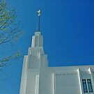 Twin Falls Idaho LDS Temple 2 by Nick Boren