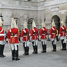 Changing of the guards. by machka