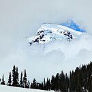 Peek at the Peak by Janet Fikar