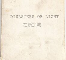 Disasters of Light  by Ben  May