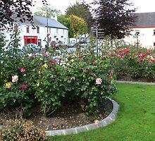 Stradbally Village,County Waterford,Ireland.# 2 by Pat Duggan