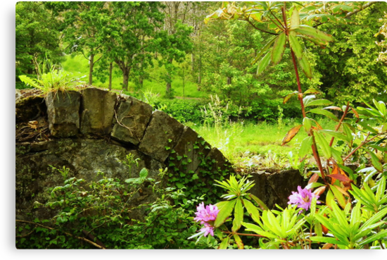 A green and pleasant place by Agnes McGuinness